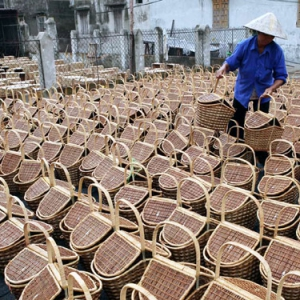 Dự báo xu hướng thị trường mây tre đan trên thế giới sắp tới